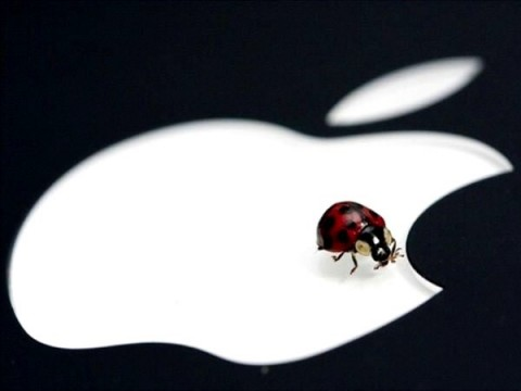 Apple, 200 mila dollari a chi scopre bug alla sicurezza
