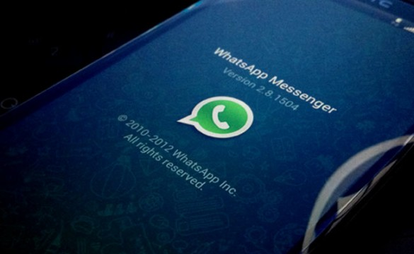 whatsapp chat in evidenza