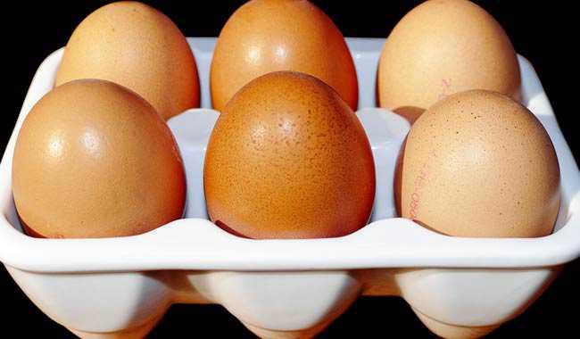 Un uovo al giorno contro le malattie cardiache
