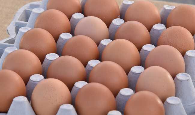 Uova disposto ritiro per pericolo di salmonellosi