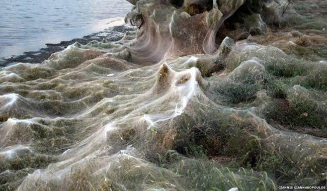 Grecia Aitoliko la citta avvolta dalle ragnatele