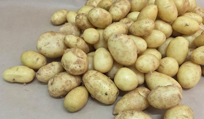Come dimagrire con la dieta delle patate