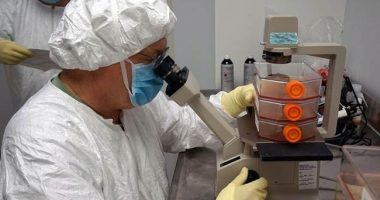 Dalla genetica del colesterolo una soluzione per il diabete