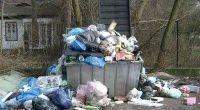 Roma Virginia Raggi non riesce a fronteggiare emergenza rifiuti