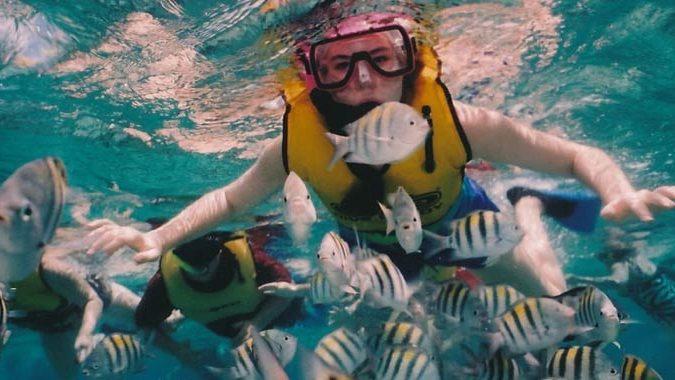 Bahamas, 21enne sbranata dagli squali mentre faceva snorkeling