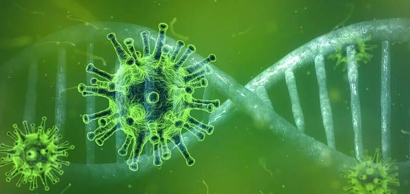 Coronavirus spaventa ancora di piu perche arrivato in Africa