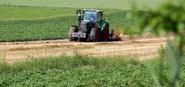 Domande di regolarizzazione, poche nel settore agricolo