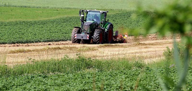 Domande di regolarizzazione poche nel settore agricolo