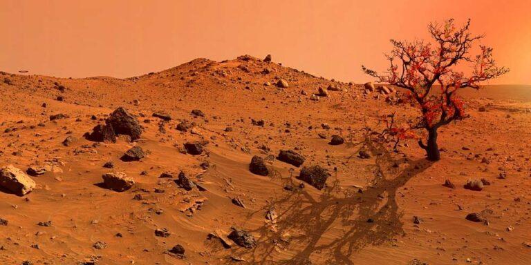 Marte: Vita aliena darebbe una mano nell'esplorazione dello spazio