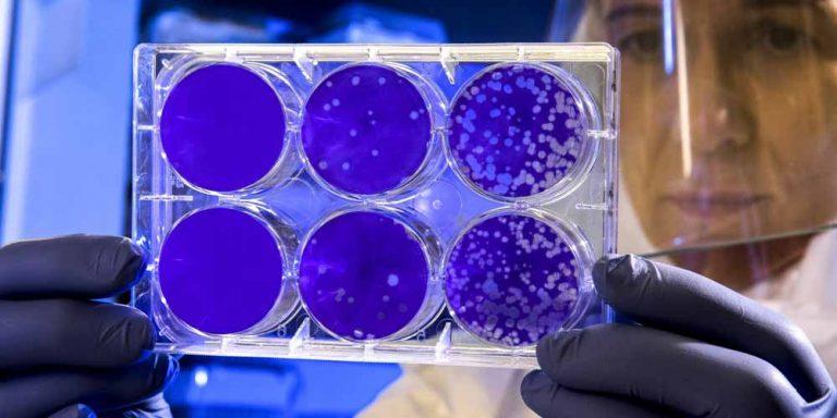 Pandemia: Cosa significa e in quando viene dichiarata