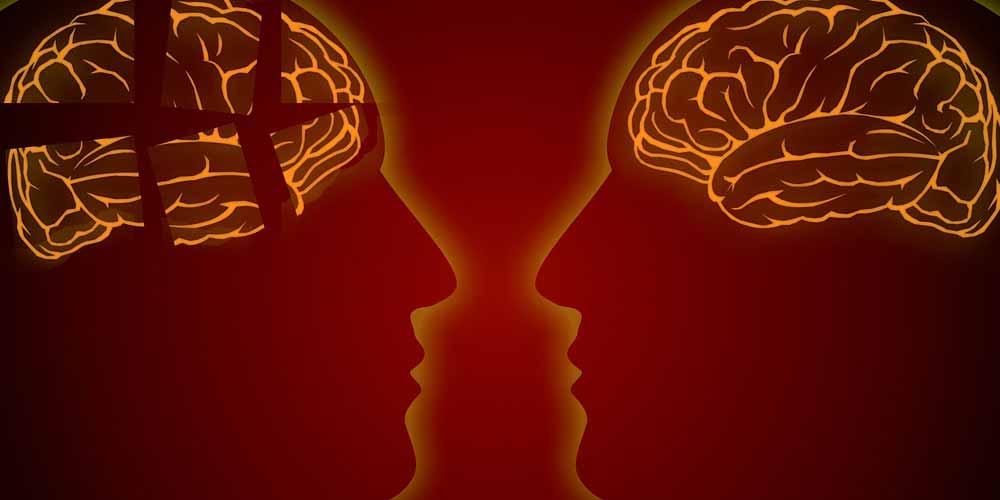 Alcuni alimenti sono a rischio Alzheimer